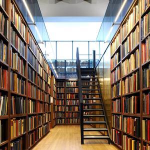 Библиотеки Черноголовки
