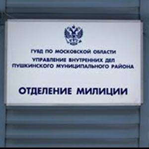 Отделения полиции Черноголовки
