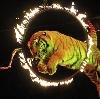 Цирки в Черноголовке