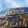 Зоопарки в Черноголовке