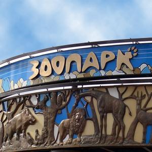 Зоопарки Черноголовки